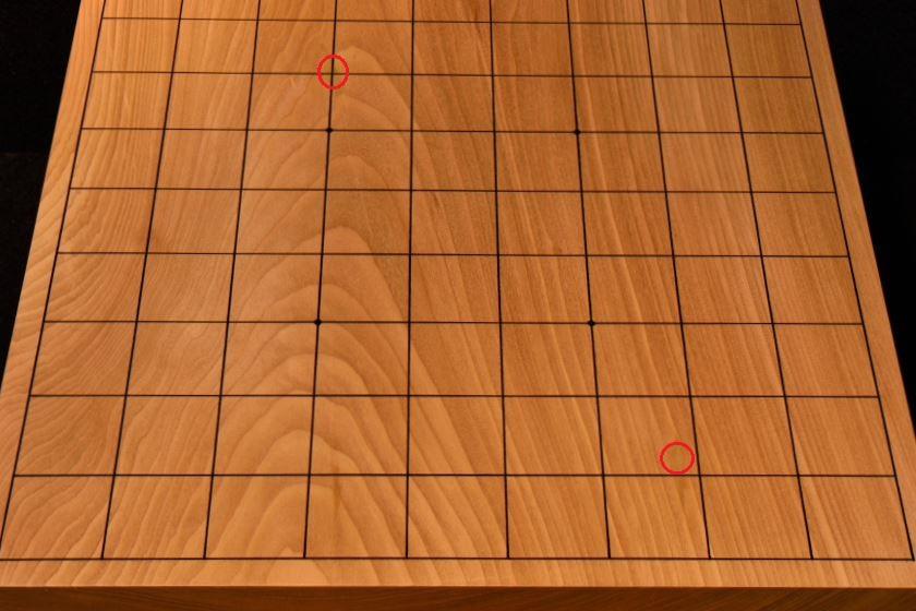 将棋盤 本桂20号